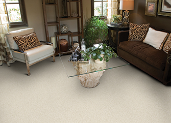 Stainmaster Petprotect Carpet And Cushion Abbey Carpet